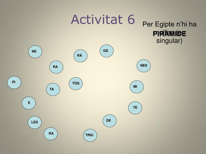 Activitat 6