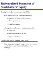 reformulated statement of stockholders equity