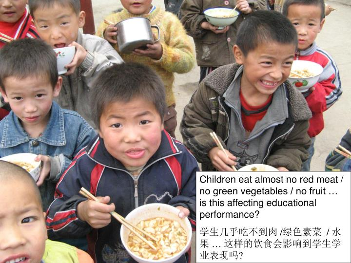 Children eat almost no red meat / no green vegetables / no fruit … is this affecting educational performance?
