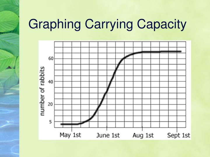 Graphing Carrying Capacity