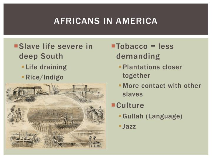 Africans in America