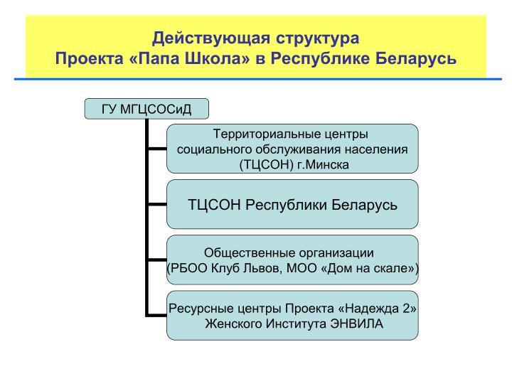 Действующая структура