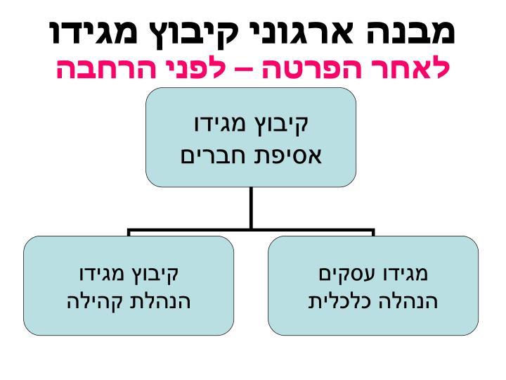 מבנה ארגוני קיבוץ מגידו