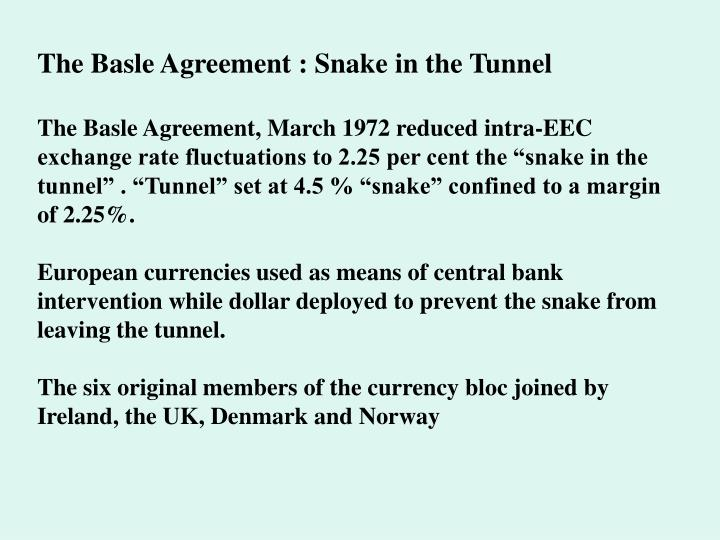 The Basle Agreement : Snake in the Tunnel