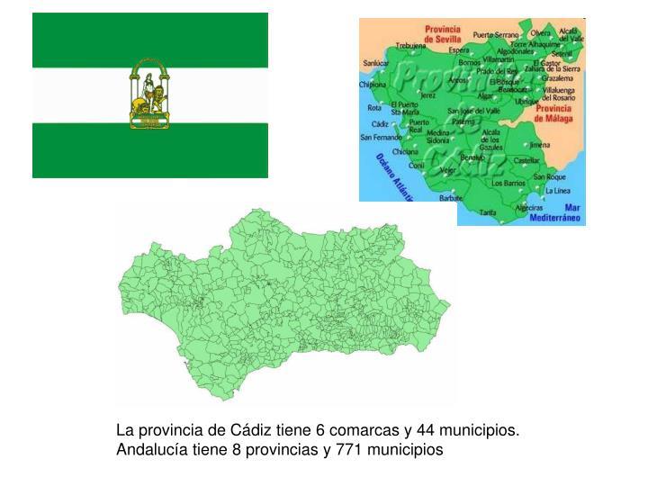 La provincia de Cádiz tiene 6 comarcas y 44 municipios.