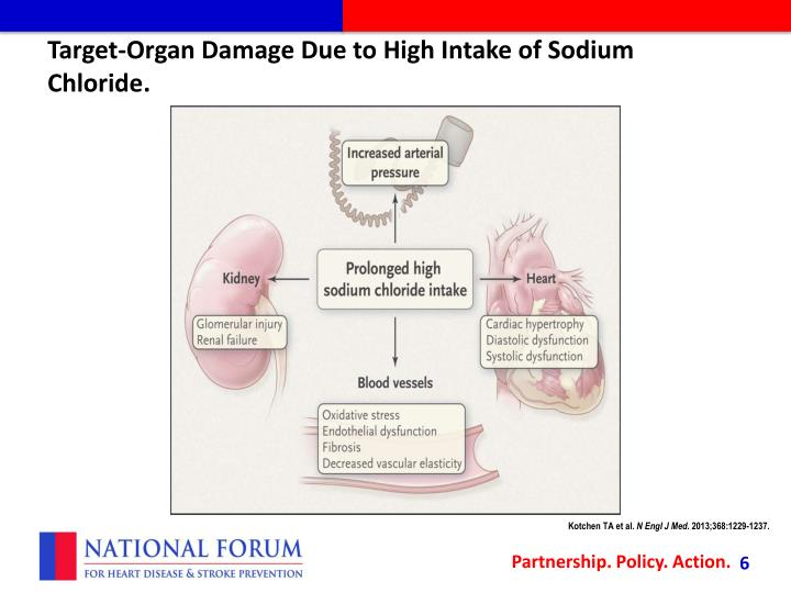 Target-Organ Damage Due to High Intake of Sodium Chloride.