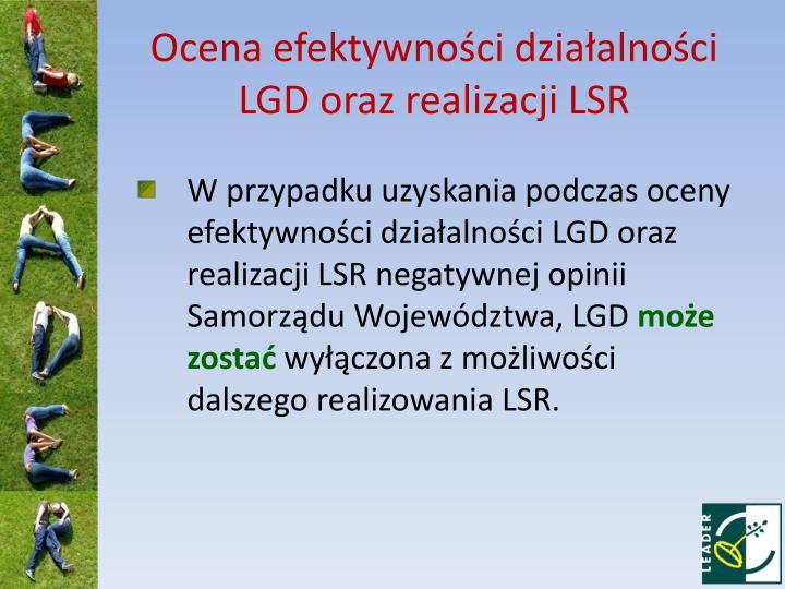 Ocena efektywności działalności LGD oraz realizacji LSR