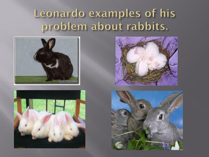 Leonardo examples of his problem about rabbits.