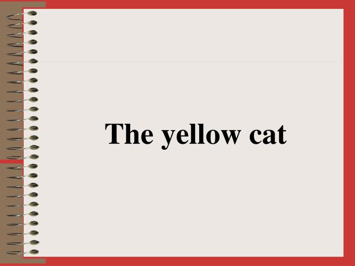 The yellow cat