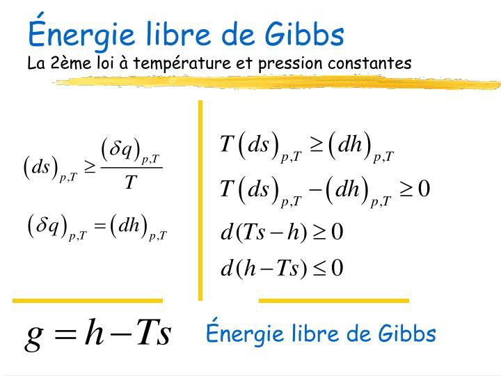 Énergie libre de Gibbs
