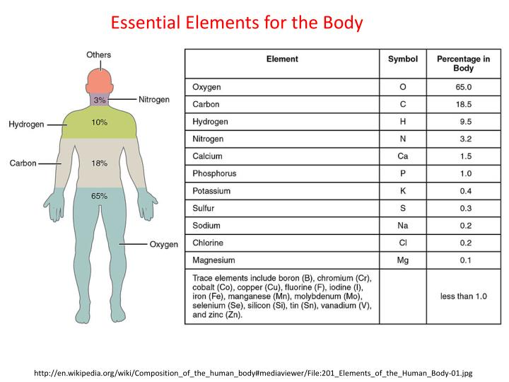 Essential Elements for the Body