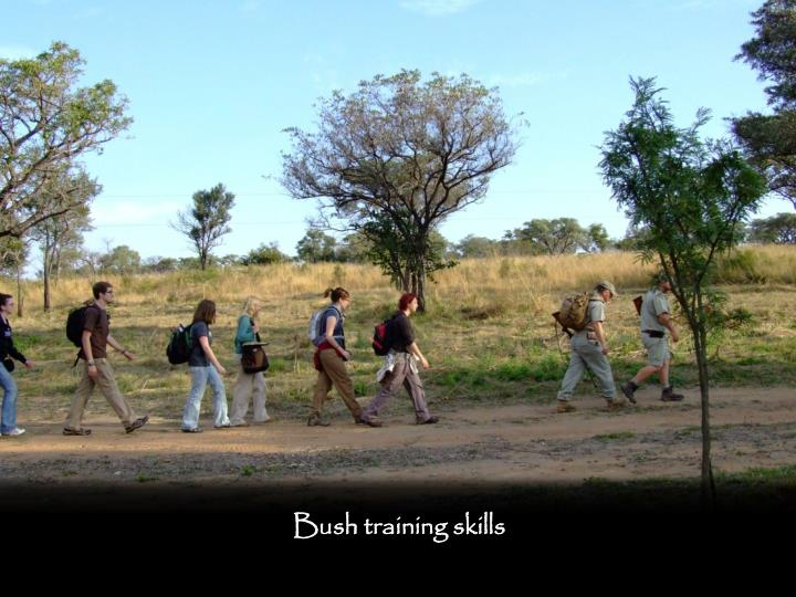 Bush training skills