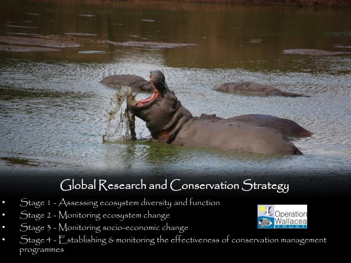Global Research and Conservation Strategy