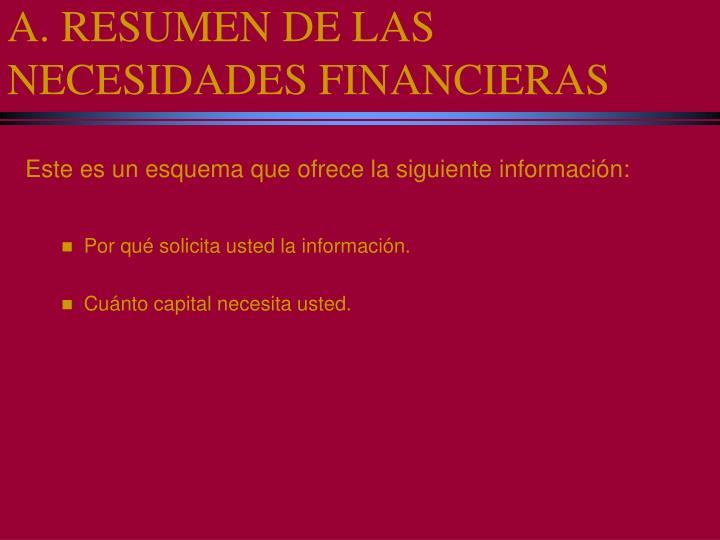 A. RESUMEN DE LAS NECESIDADES FINANCIERAS