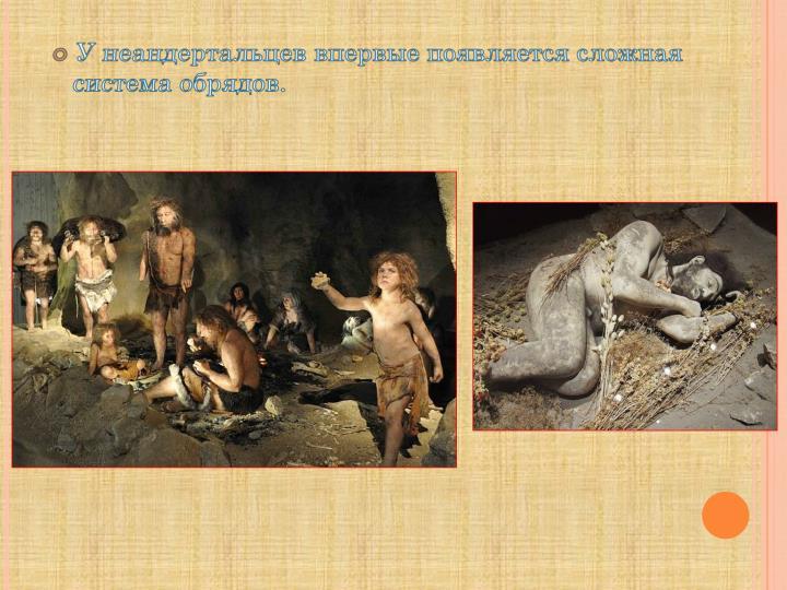 У неандертальцев впервые появляется сложная система обрядов.