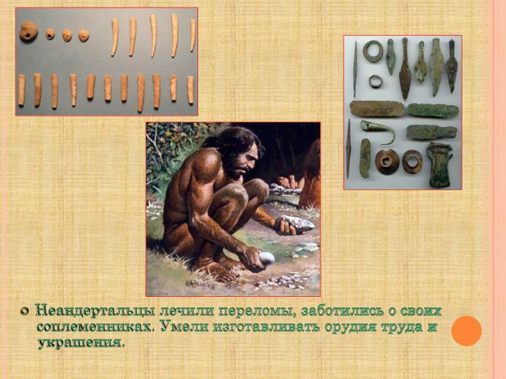 Неандертальцы лечили переломы, заботились о своих соплеменниках. Умели изготавливать орудия труда и украшения.