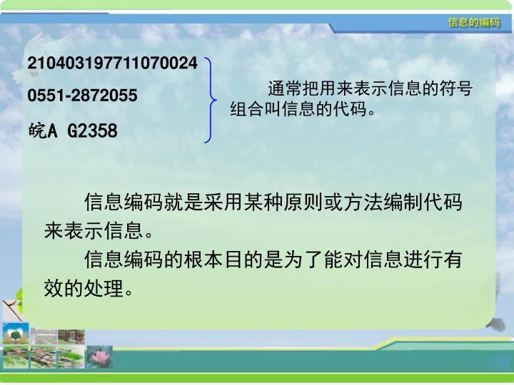 210403197711070024