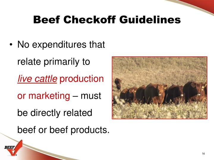 Beef Checkoff Guidelines
