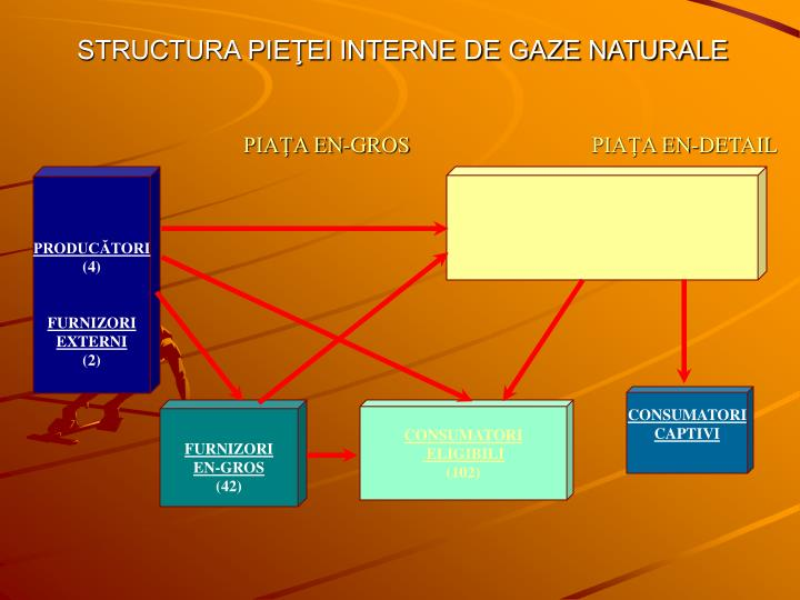 STRUCTURA PIEŢEI INTERNE DE GAZE NATURALE
