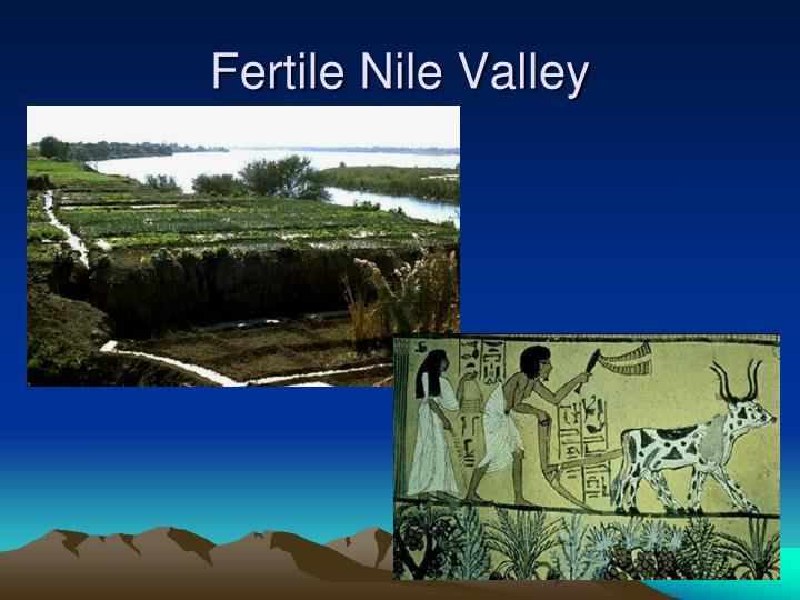Fertile nile valley