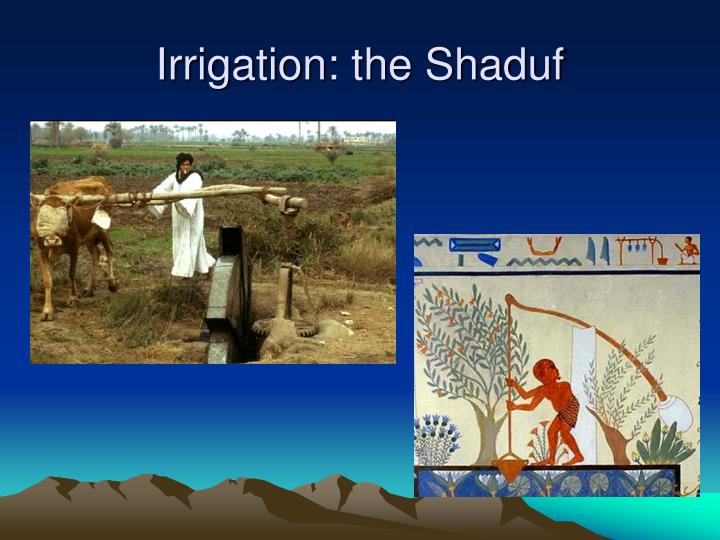 Irrigation: the Shaduf