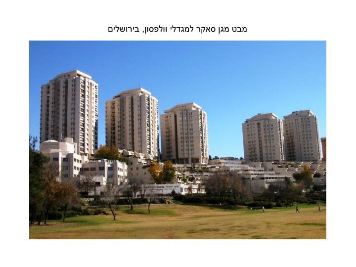 מבט מגן סאקר למגדלי וולפסון, בירושלים