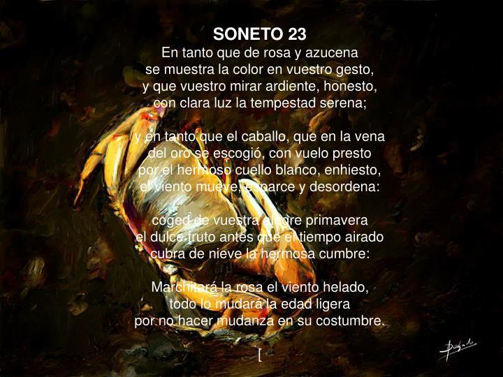 SONETO 23