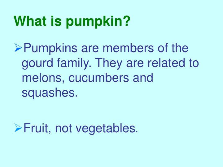 What is pumpkin?