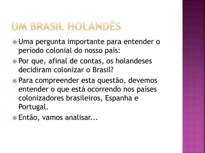 UM Brasil holandês