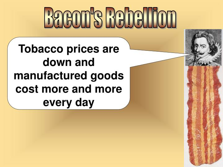 Bacon's Rebellion