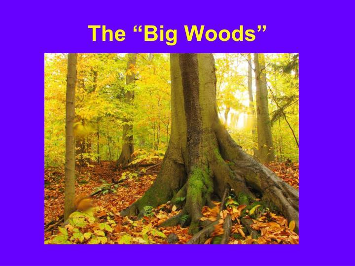 "The ""Big Woods"""