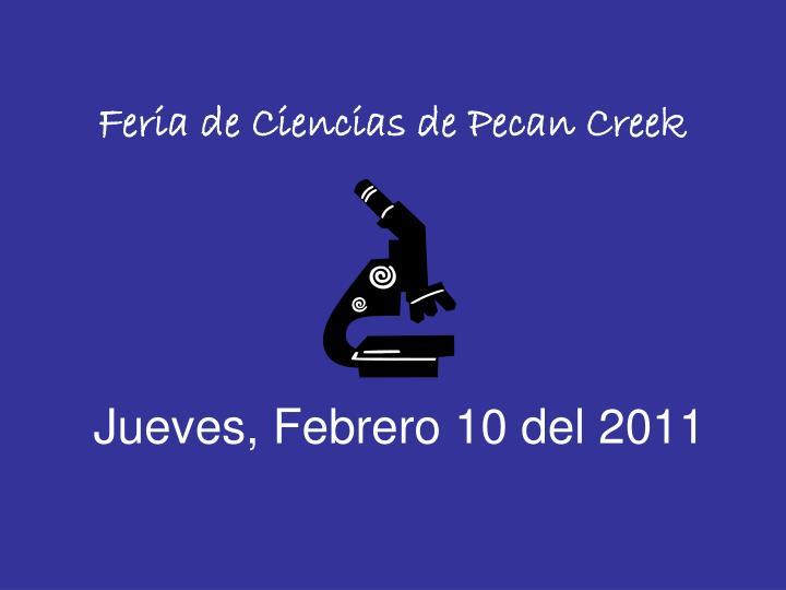 Feria de Ciencias de Pecan Creek