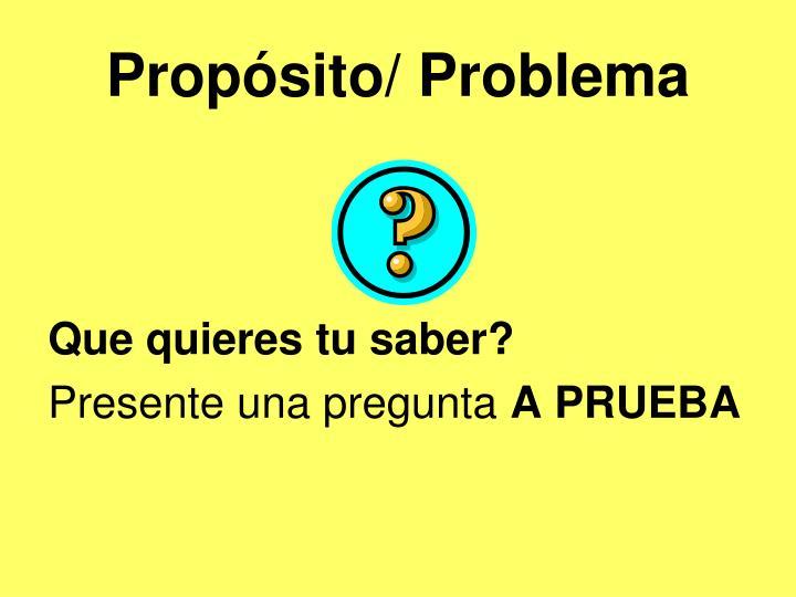 Propósito/ Problema