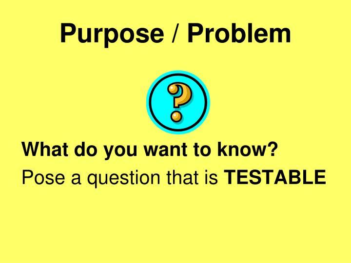 Purpose / Problem