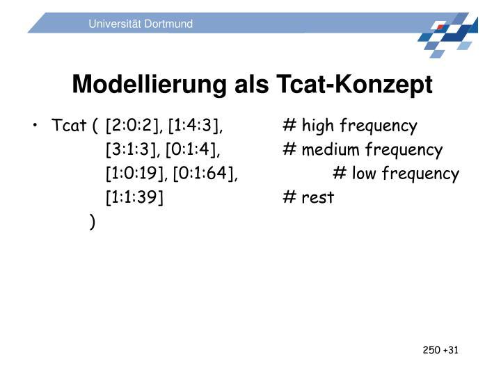 Modellierung als Tcat-Konzept