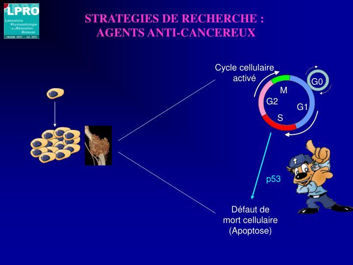 STRATEGIES DE RECHERCHE :