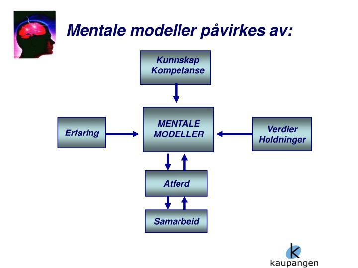 Mentale modeller påvirkes av: