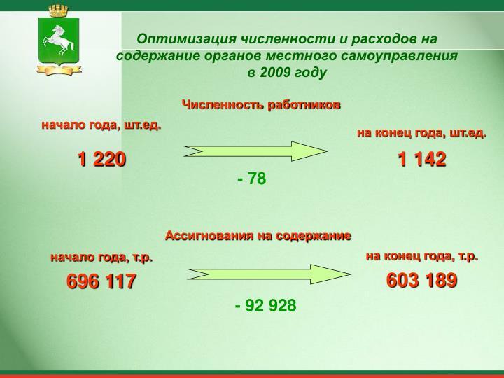 Оптимизация численности и расходов на содержание органов местного самоуправления в 2009 году