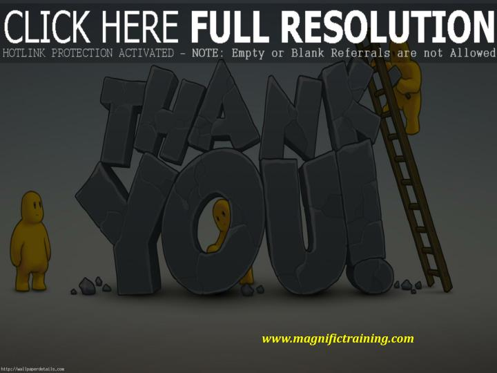 www.magnifictraining.com