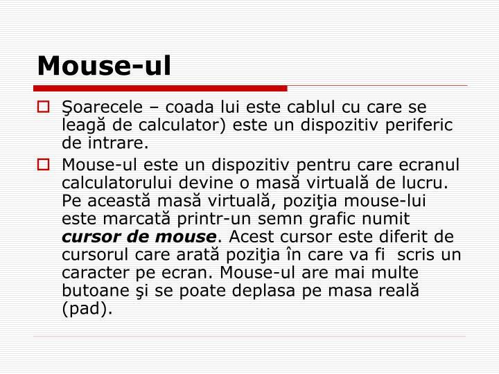Mouse-ul