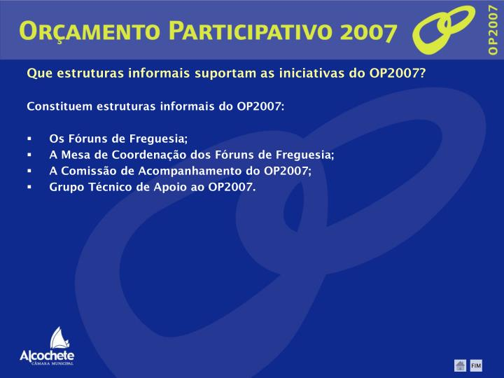 Que estruturas informais suportam as iniciativas do OP2007?