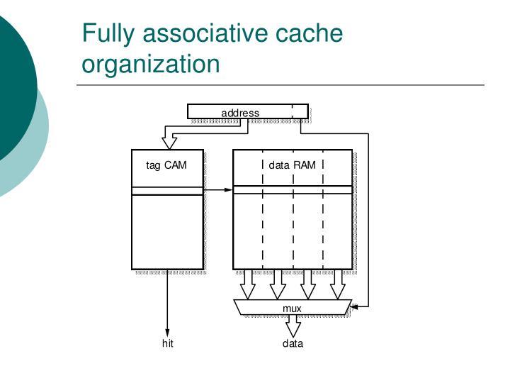 Fully associative cache organization