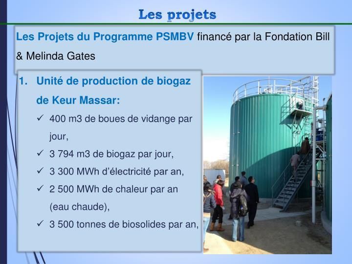 Les Projets du Programme PSMBV