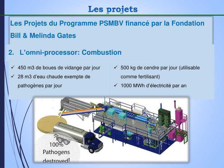 Les Projets du Programme PSMBV financé par la Fondation Bill & Melinda Gates