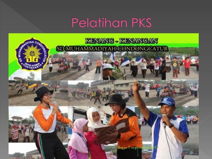 Pelatihan PKS