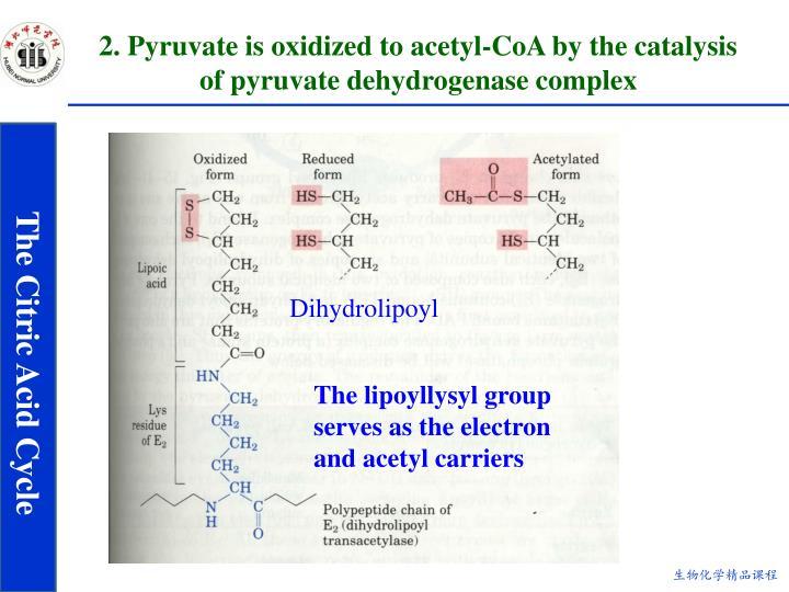 Dihydrolipoyl