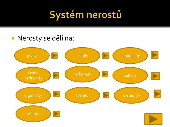 Systém nerostů