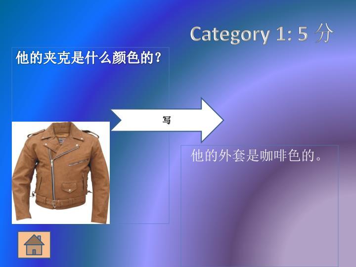 Category 1: 5