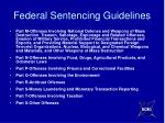 federal sentencing guidelines1