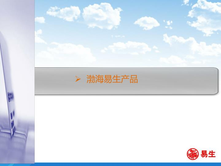 渤海易生产品